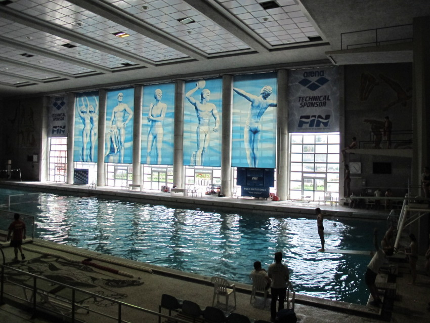 images - Olympic Swimming Pool 2013